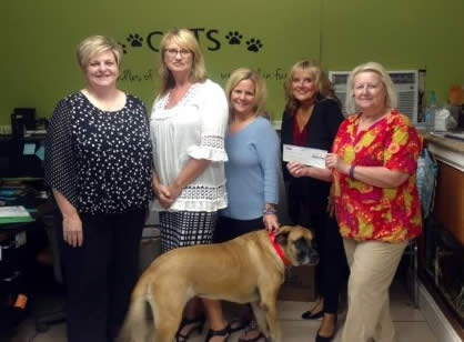 Golden Paws Donation